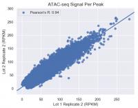 ATAC-Seq Kit