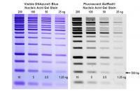 BT41020: DNAzure® Blue Nucleic Acid Gel