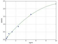 8-oxoguanine DNA glycosylase (OGG1)(Huma
