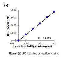 Lysophosphatidylcholine Assay Kit (Color