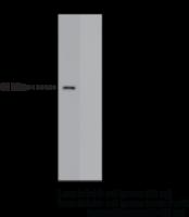 CAY14265-1 ea: FFAR4 (GPR120) (C-Term) P