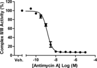 CAY700950-96 wells: MitoCheck® Complex I