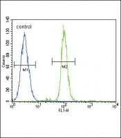 CD14 Antibody (N-term) (Cat. #TA302271)