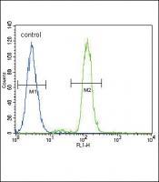 CD14 Antibody (C-term) (Cat. #TA302272)